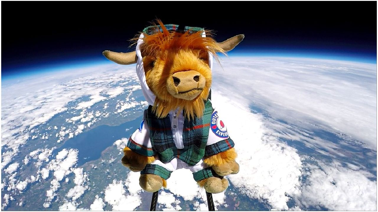 Moo-n landing: Toy Highland Cow takes giant leap into space
