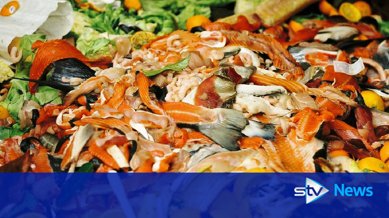 christmas food waste could fill 700 000 wheelie bins