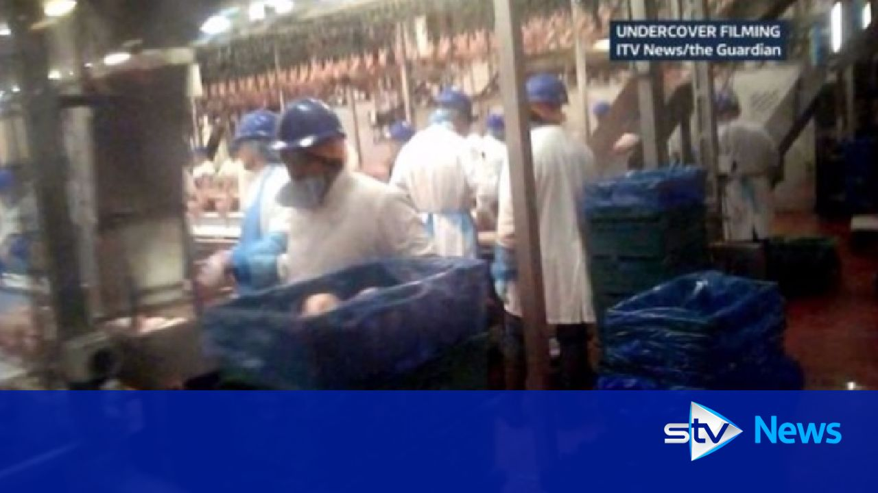 2 Sisters Food Group Suspends Operations After Food-Safety ...