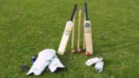 Cricket: The group were playing in Brightons village (file pic).