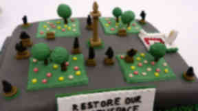 Sweet treat: Kirsteen Oliver has made a cake in support of the Restore George Square campaign.