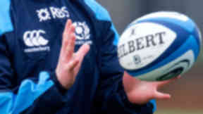 Rugby: The vote passed unanimously. (file pic)