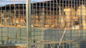 Lions and tigers at Circus High School in Fraserburgh in Aberdeenshire. SOURCE: Born Free PERMISSION: Yes USAGE LIMITS: None DATE: November 5 2014
