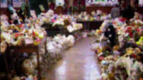 Dunblane Tragedy 20th anniversary