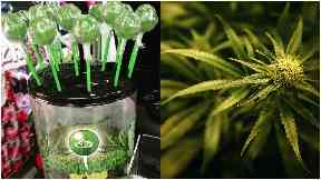 Cannabis: The dinner ladies have been accused of bringing the lollipops into schools.