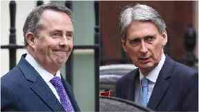 Liam Fox and Philip Hammond have attempt to paper over divisions on Brexit