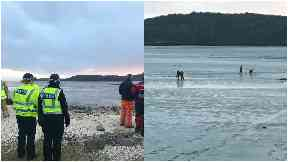 Mud rescue Solway Coast February 2018