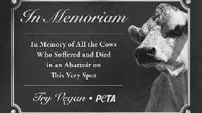 Peta slaughterhouse plaque mockup