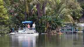 Alligator killed in Florida as missing dog walker feared dead