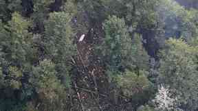 Man who stole plane and crashed near Seattle had aircraft clearance