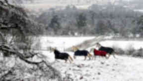 Snowy snow aberdeenshire