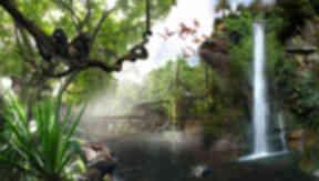 Tropical Zone biosphere planned for Cuningar Loop, Rutherglen. Wildside World Ltd