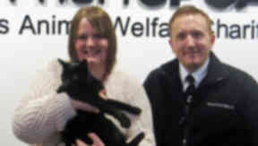 Murphy the cat who has been reunited with his family after going missing in 2009.