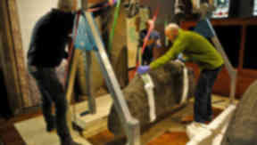 One of the 'Hogback Stones' being moved from Govan Old Church to the British Museum.