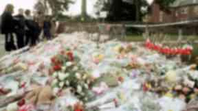 Dunblane: Flowers outside school.