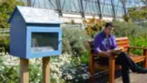 Sunny spot: The Botanics fills its little library with nature books.