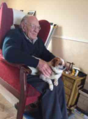 Stephen and Appollo needed help with rehoming fees.
