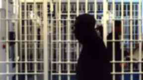 Prisoners: Committee proposed they be given right to vote.