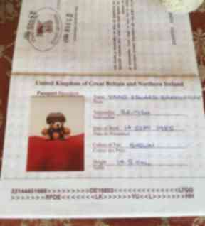 Some of the teddy bears even have their own passports.