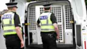 Custody: Man set himself on fire in police van