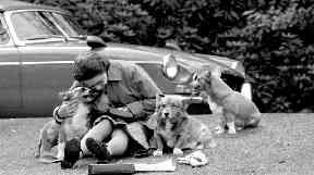 The Queen has adored corgis for years.