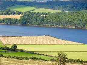 A farmer creates a tartan pattern overlooking the Dornoch Firth.