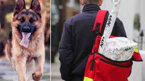 Royal Mail: Postman is still off work after attack.
