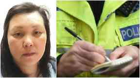 Missing: Mei Ying Weng was last seen in July.