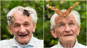 Wish granted: Tommy Hagan, 81, wanted to visit Butterfly World.