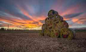 Fun emoji hay bale creation spotted near Monikie all in aid of Children in Need.