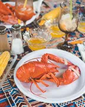 Seafood is often eaten in the United States as an appetiser.