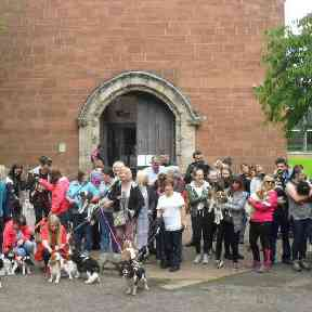 Around 45 dogs turned up to the first meet up in Glasgow.
