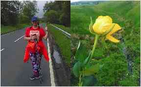 Blooming: Ruth is walking to London to celebrate her new outlook on life.