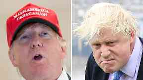 US ambassador Woody Johnson said Donald Trump 'makes his own schedule' and he would arrange a meeting with Boris Johnson if the president asked.