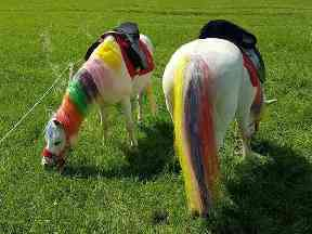 Pony painting parties are growing in popularity.