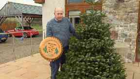 John Junor from Inverness has picked out a 20ft tree to adorn Downing Street.