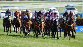 Horses from the infected yard raced at Ayr.