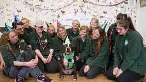 Star: The Staffie has been rehomed after five years.