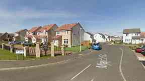 Anstruther: The pedestrian was knocked down on March Road.