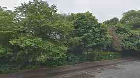 The body was found in the King George V Park in Edinburgh.