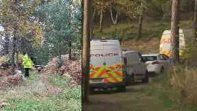 Birkenhill Woods: Three people were attacked on Monday.