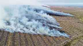 Flames rages across the fields.