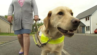 Loyal: Guide dog Garner was not allowed on the ambulance with his blind owner