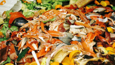 Waste: Recycling unavoidable food waste holds dual benefits.