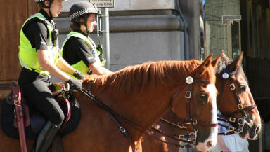 Police horse: Dornan appeared from custody on Thursday (file pic).