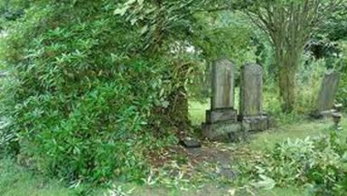 Riddrie Cemetery: Council slammed for state of the graveyard.