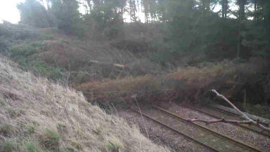 Storm: Several trees fell on the line at Markinch, Fife.