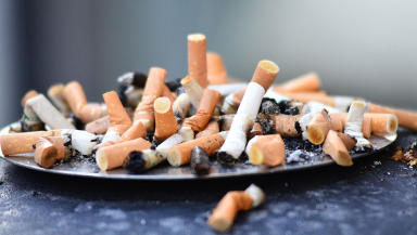 An estimated six million people die from health complications from smoking in the world each year.