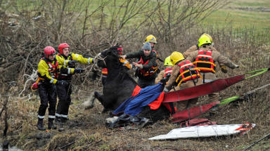 Corra Clydesdale horse rescued from River Leven.