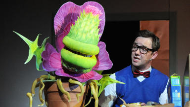 Spital Shop of Horrors Student Show in Aberdeen